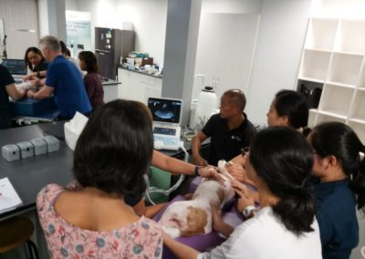 Small Animal Veterinary Echocardiography Course